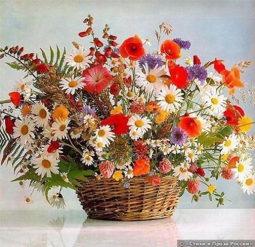 Поздравляем с Днем Рождения Анастасию (Анастасия 053) 461b2ff77973c0cbad2964b39e528bd5