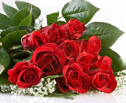 Поздравляем с Днем Рождения Татьяну (ladi86) B42e10d3d0d763995634dbc89127c76e