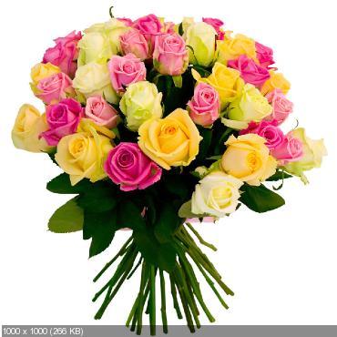 Поздравляем с Днем Рождения Лесю (Арвен))) 47a294332d8700747f83126b7387d65a
