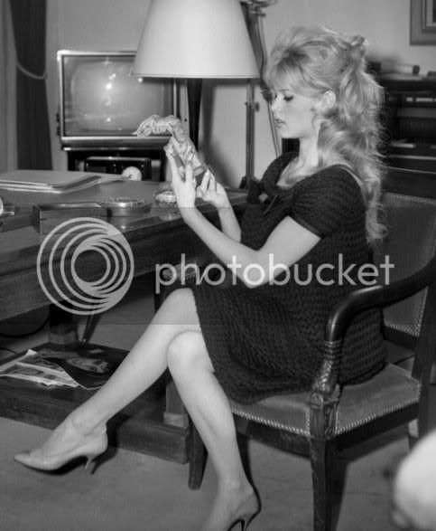 Brigitte et sa grossesse Prego004