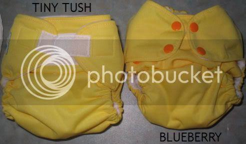 comparaison tiny tush (photos) TINYTUSHVSBLUEBERRY
