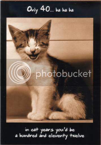 HAPPY 40TH BIRTHDAY ANGEL! Fs-cat-birthday-cards-3