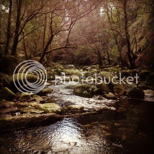 ¡Allá voy, allá voy, piedras, esperen!  Acompañando a Neruda. Piscinas-naturales-del-rio-piedras_4156231
