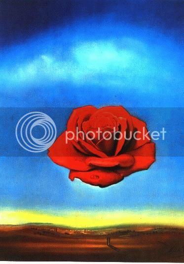 MEDITATIVAS MENTES Rosesd