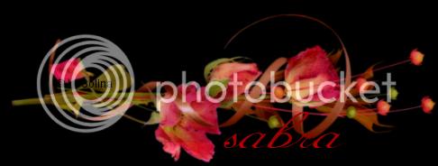 FIRMAS SABRA (De Solina) Tepiensooo_zps6d209980