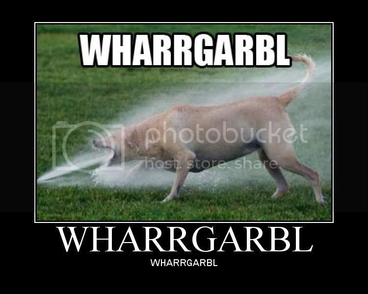 This Site Needs Moar Spam Wharrgarbl