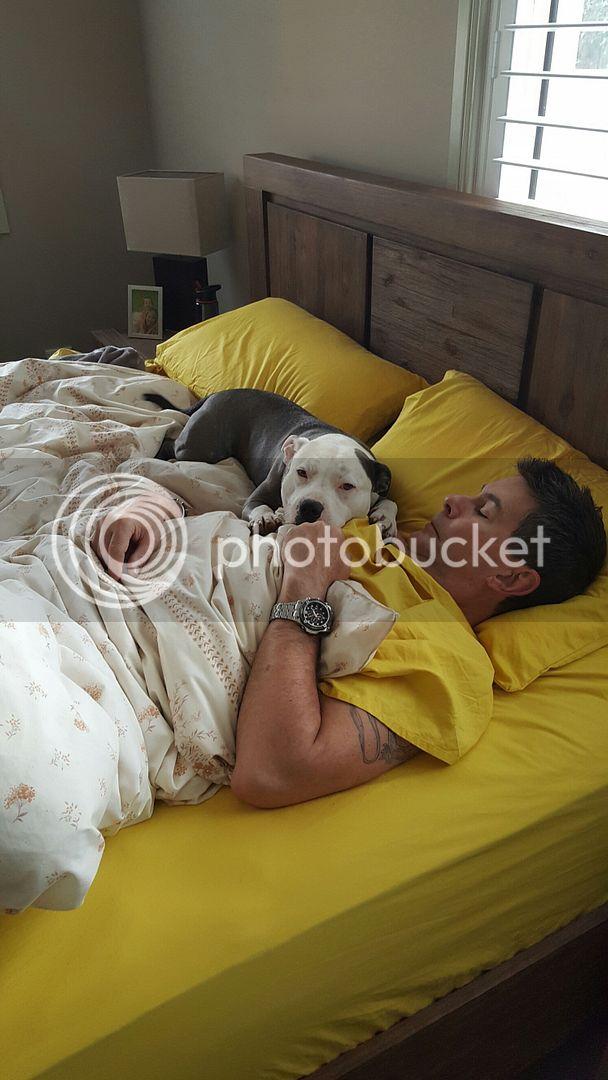 Lazy Saturday in bed  20150822_070724_resized_zps5rtklokx