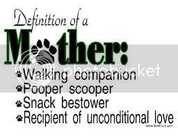 Happy Mothers Day ! Staffy%20mum_zpsfc8ll2py