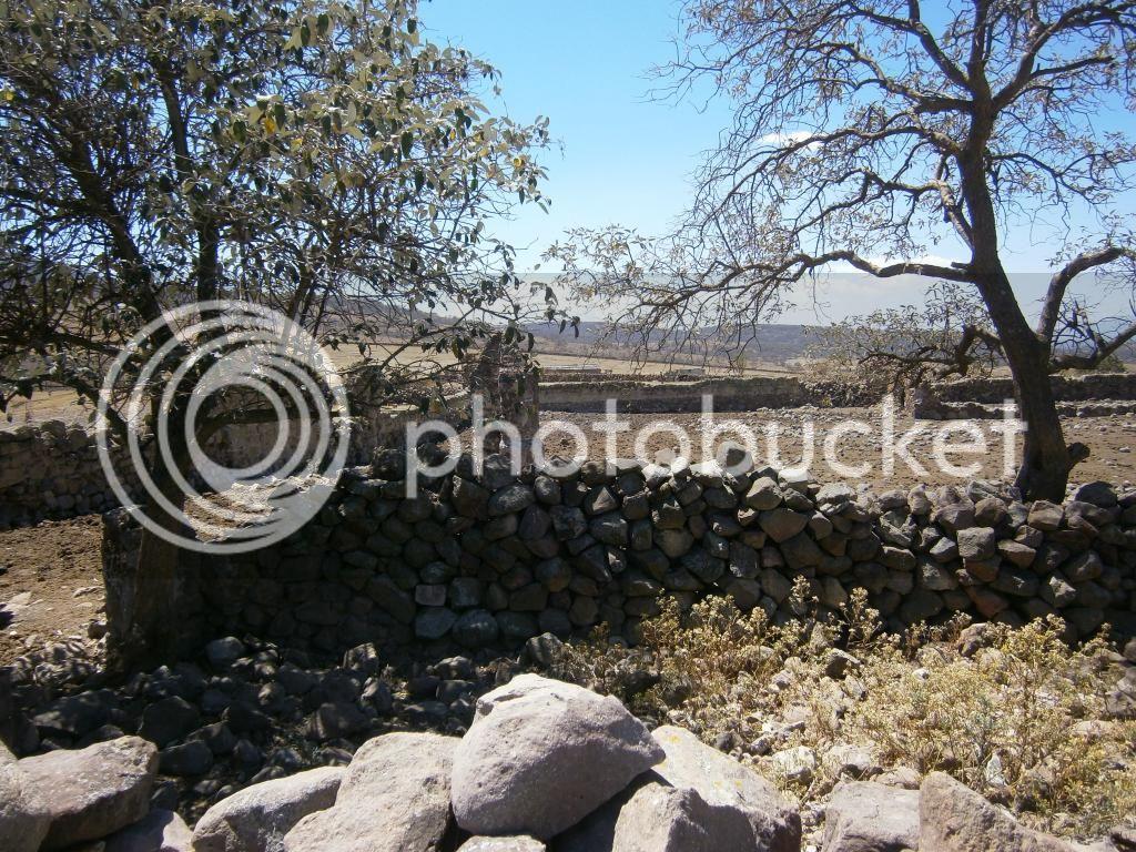 Invitación a prospectar en una hacienda en el Estado de México - Página 6 P4010560_zps5b9a375a