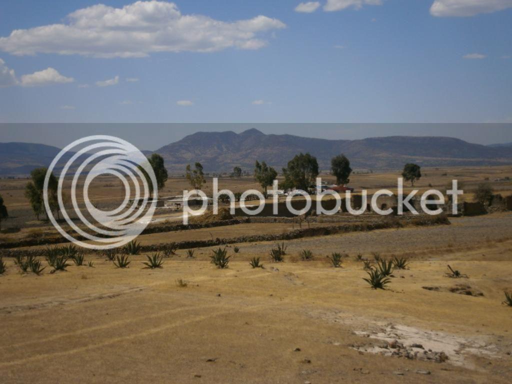 Invitación a prospectar en una hacienda en el Estado de México - Página 7 P4010569_zps5a24e47b