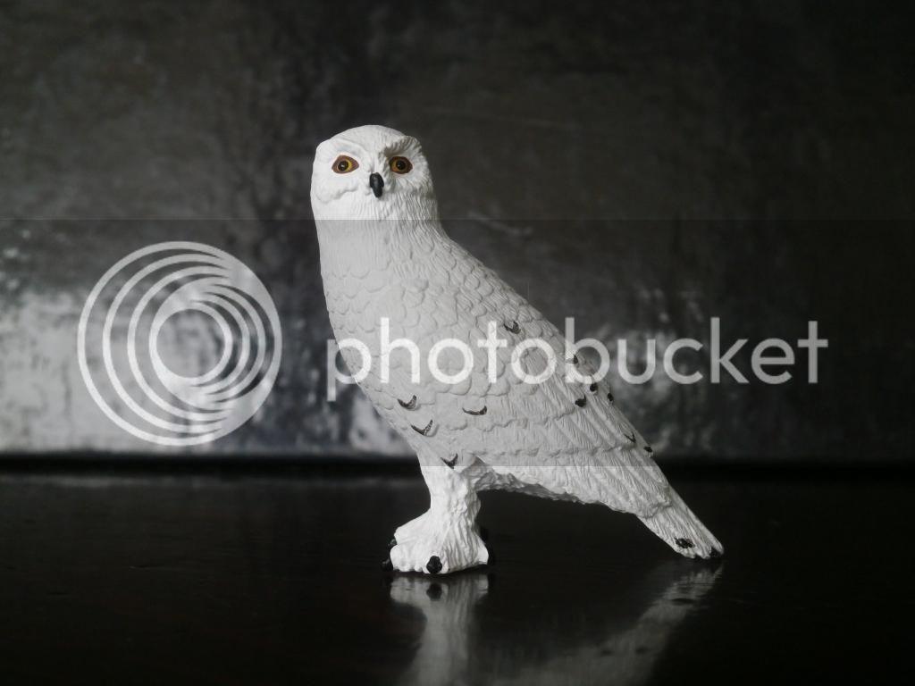 Mojo 2014 Snowy owl walkaround by ulinuk P8173961_zps64dacd69