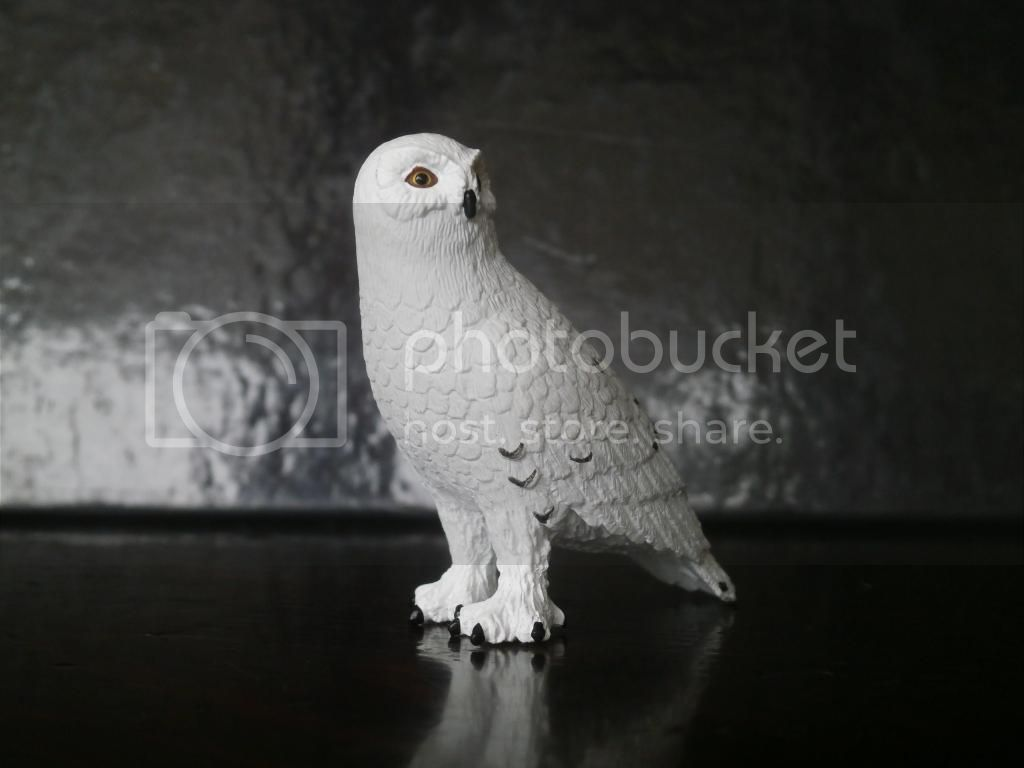 Mojo 2014 Snowy owl walkaround by ulinuk P8173962_zps700b8b6b