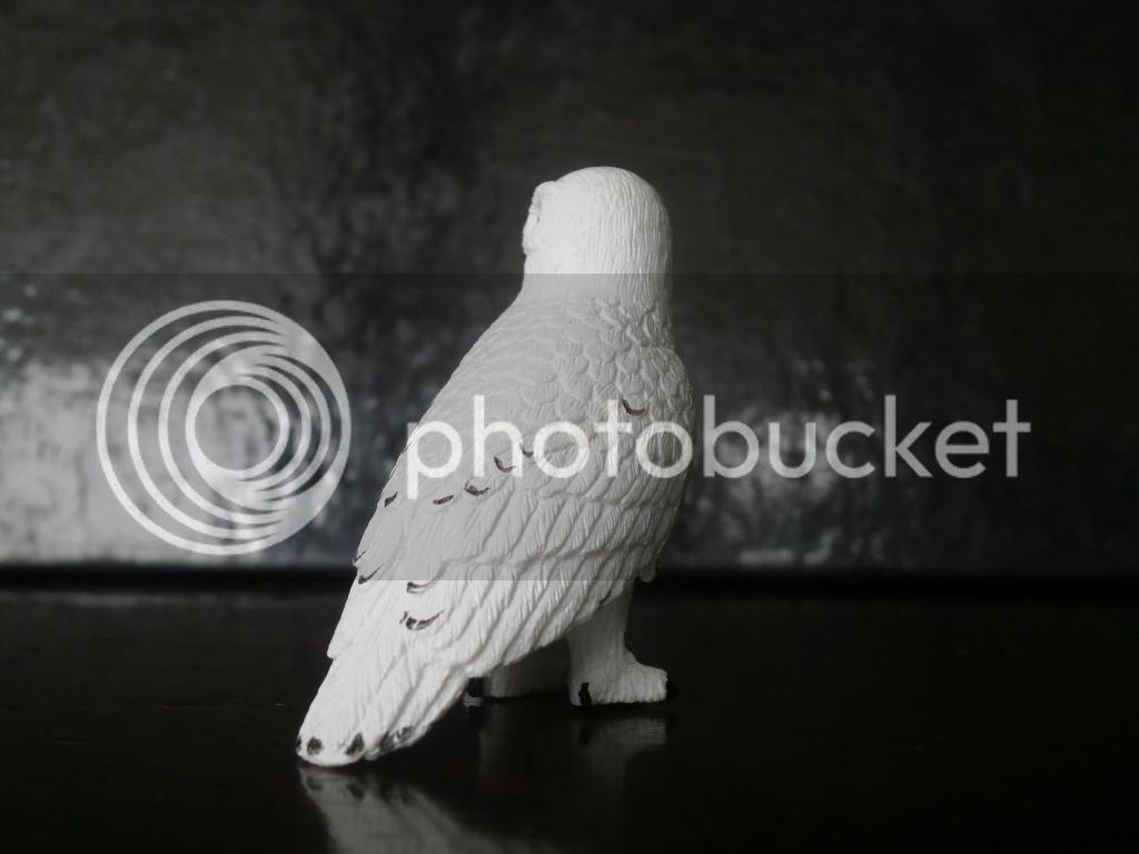 Mojo 2014 Snowy owl walkaround by ulinuk P8173968_zps33b17357