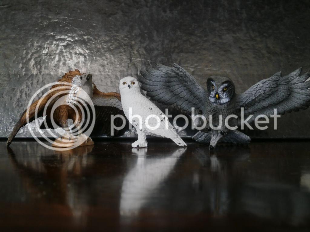 Mojo 2014 Snowy owl walkaround by ulinuk P8183979_zpsee4f9638
