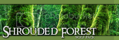 Shrouded Forest Pack