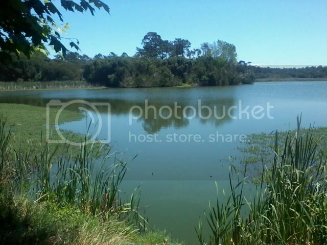 [FOTO REPORT] De Aveiro a Soure - 23JUL2013 2013-07-23135029_zps6e8d5c9c