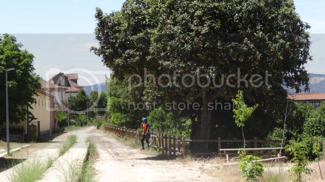 [FOTO REPORT] - Rota do Coa e da Linha do Sabor - 01 a 05JUNHO2014 DSC02096_zpsc54afbb7