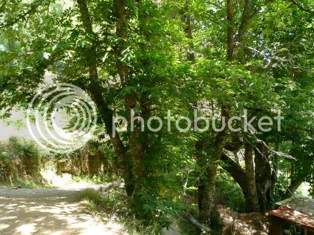 Por terras das Beiras - 04 a 09/07/2010 580