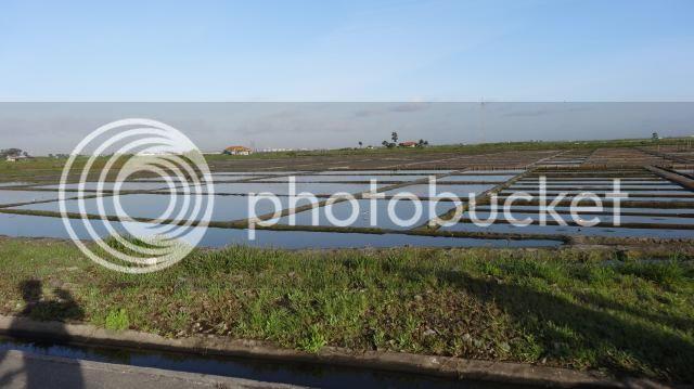 [FOTO REPORT] Por Terras da Beiras - 25 a 27ABRIL2014 DSC00827_zps08b510e1