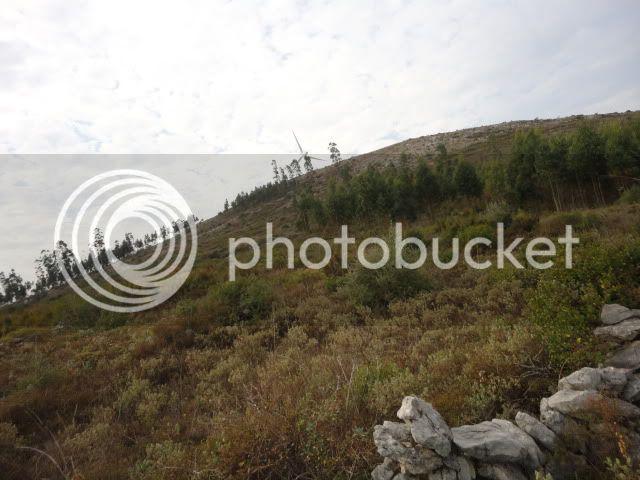 [FOTO REPORT] - Sicó 16NOVEMBRO2011 DSC06628
