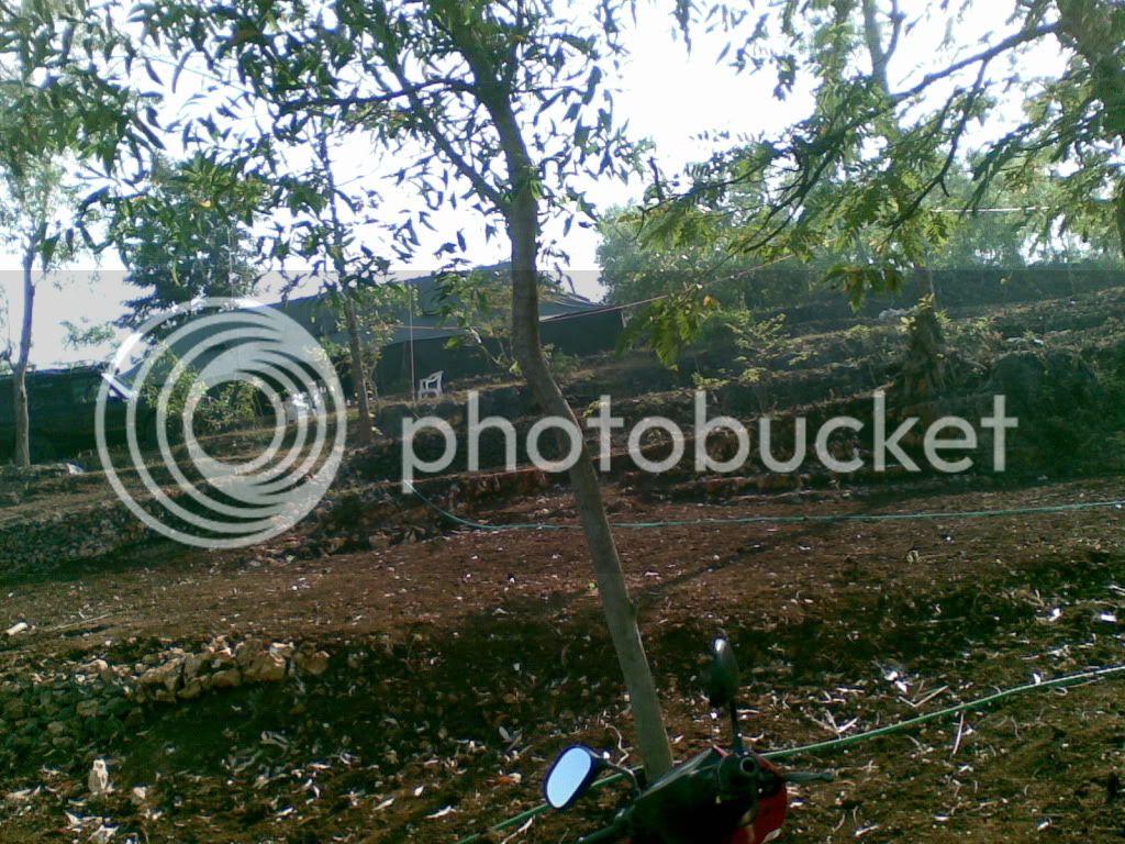 goa jomblang 02072009_012