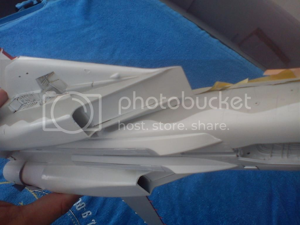F-14A VF-84 Jolly Rogers, Hobby Boss 1/48 DSC00243