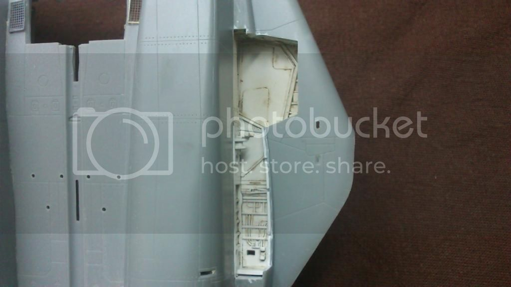 F-14A VF-84 Jolly Rogers, Hobby Boss 1/48 DSC_8297