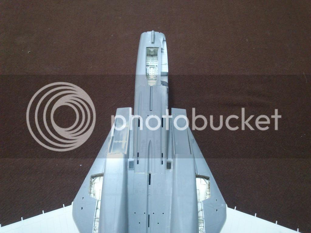 F-14A VF-84 Jolly Rogers, Hobby Boss 1/48 DSC_8359
