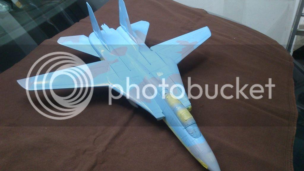 F-14A NSAWC, Revell 1/32 DSC_8109