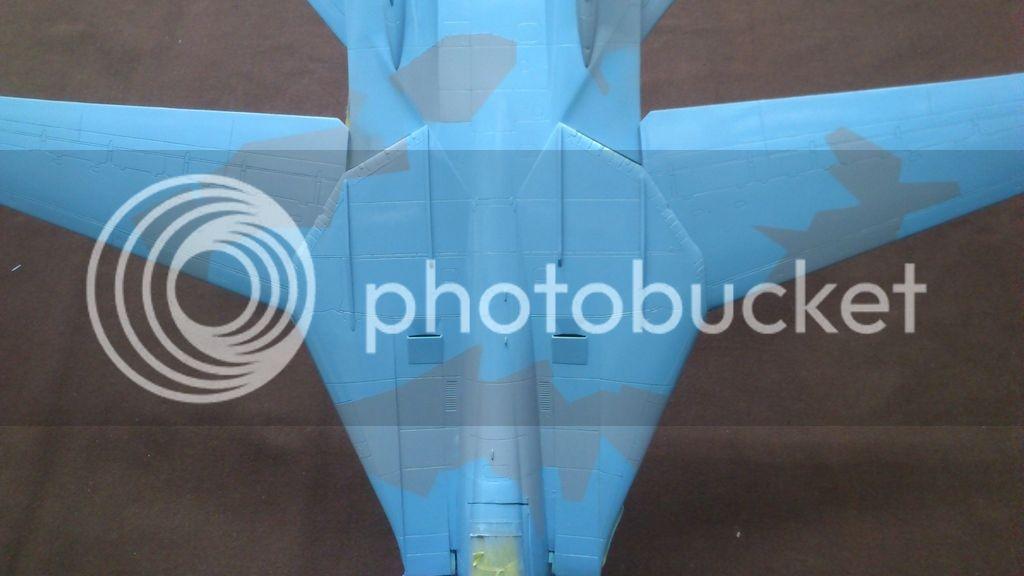 F-14A NSAWC, Revell 1/32 DSC_8111