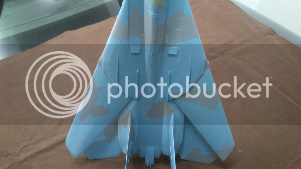 F-14A NSAWC, Revell 1/32 DSC_8118