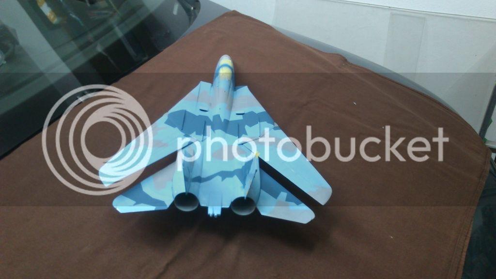 F-14A NSAWC, Revell 1/32 DSC_8121