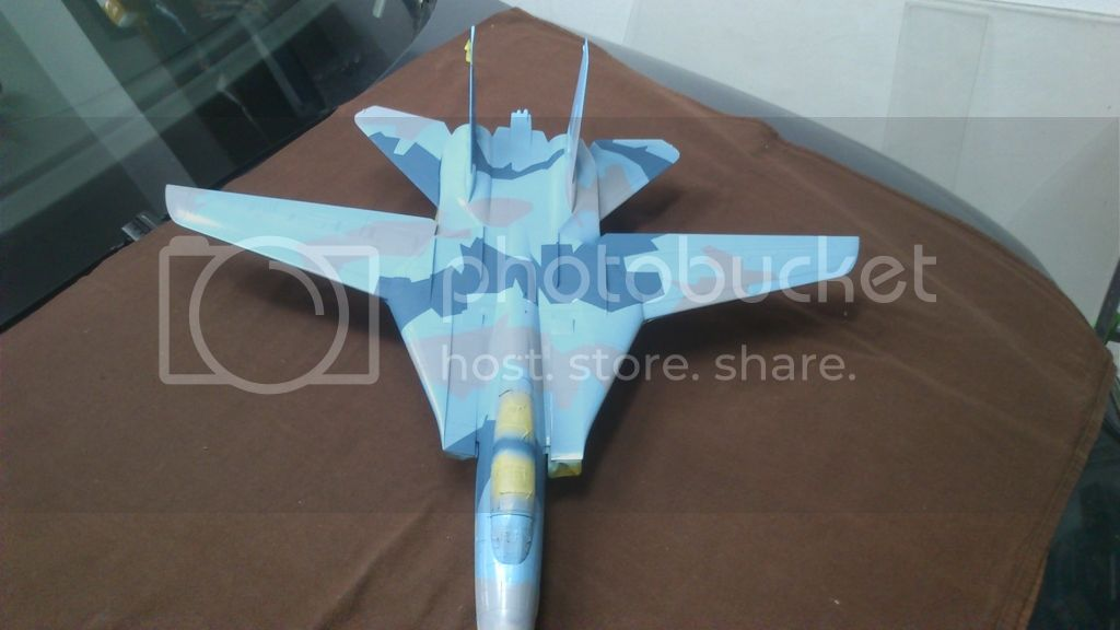 F-14A NSAWC, Revell 1/32 DSC_8122