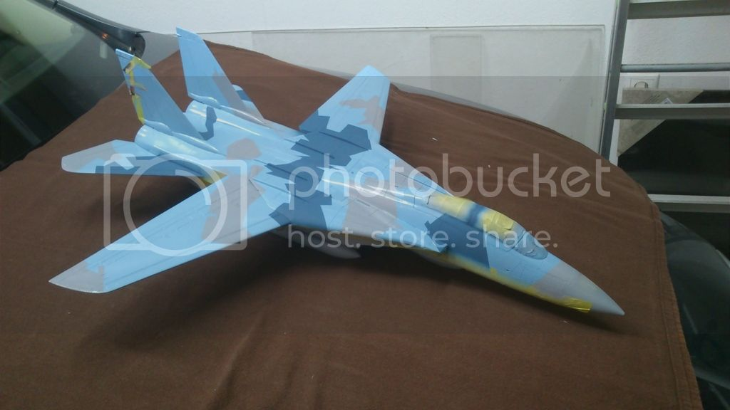 F-14A NSAWC, Revell 1/32 DSC_8123