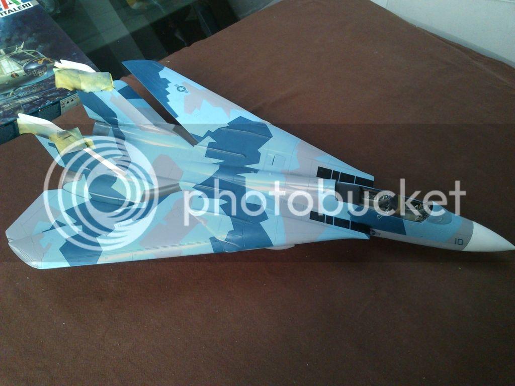 F-14A NSAWC, Revell 1/32 DSC_8479