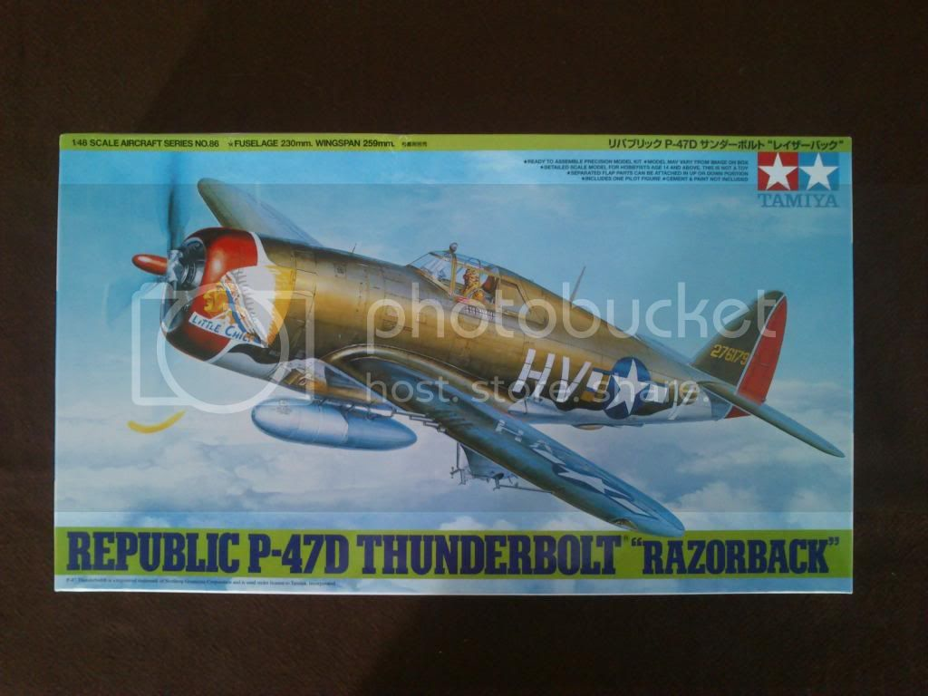 P-47D, Steve Pisanos DSC_7737