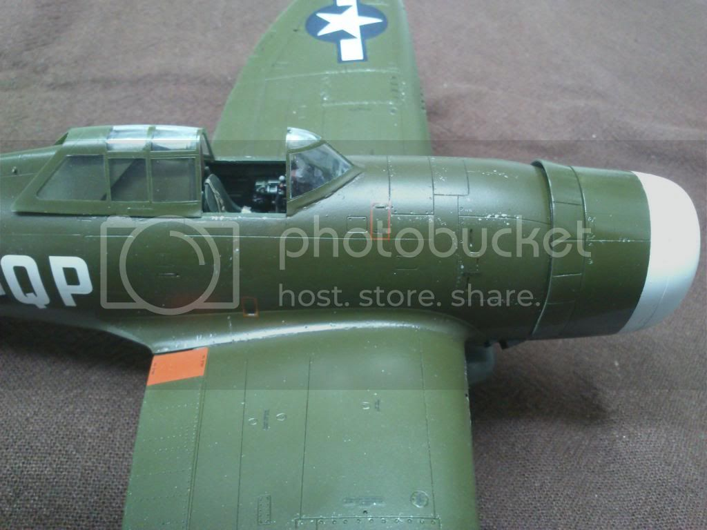 P-47D, Steve Pisanos - Σελίδα 4 DSC_7868