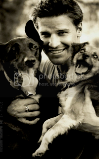 photo 200320_davidboreanaz4_zpscbrlhawr.png