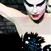 Black Swan {Film} C8833ea0