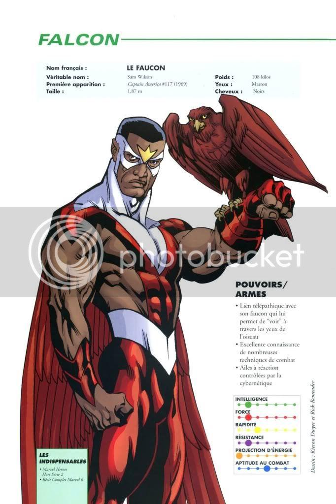 LE FAUCON ( Falcon ) Encyclopedie-018