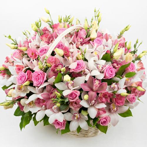 Поздравляем с Днем Рождения Елену (Selena-s) C35a66d8f8d1bda0a892003f8b493598