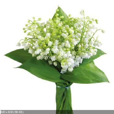 Поздравляем с Днем Рождения Наталью (Наталья Сычова) 902ee55c3f7f73a8abb19a5f5101025c