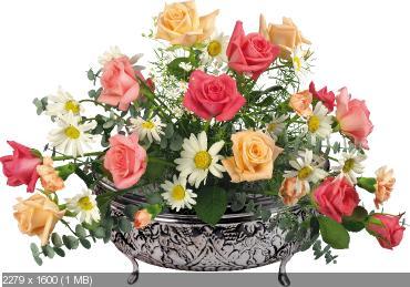 Поздравляем с Днем Рождения Ольгу (olga-bu)! Aac4da266f39912dfab81f55a1724d72