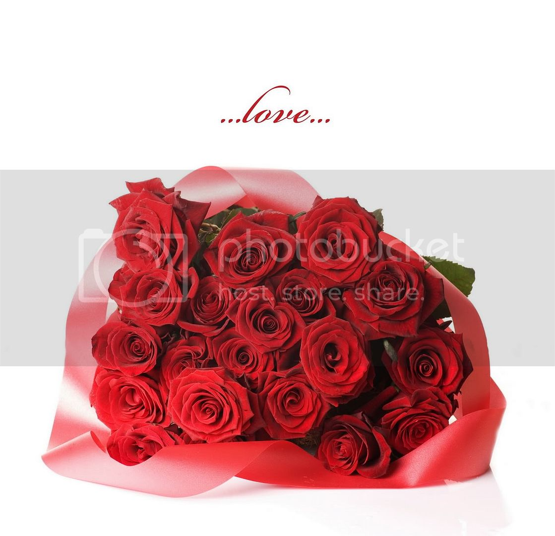 love rose flower Love004