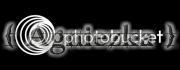 Fraternidad Agniezka - Presidenta
