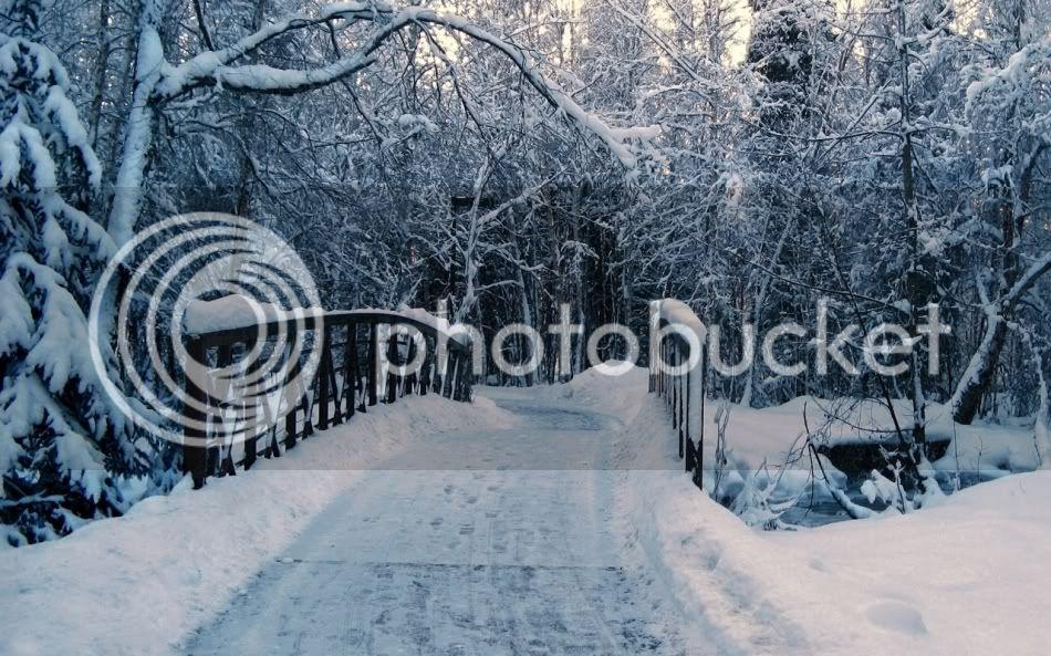 Le voyage d'hiver A1-2