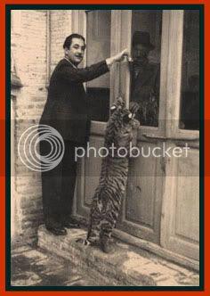 TIGRE - panthera tigris - Page 5 Caspian2