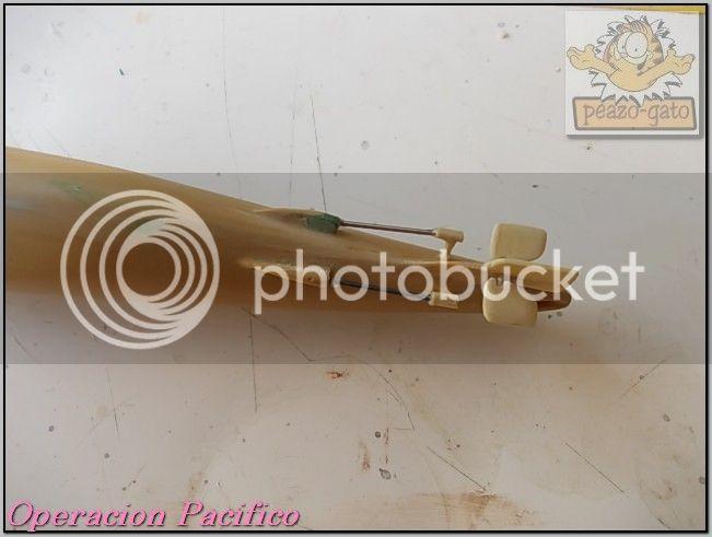 Operación Pacifico 41OperacionPacificopeazo-gato_zpse21a42d5