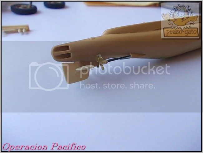 Operación Pacifico 48OperacionPacificopeazo-gato_zps559f74c6