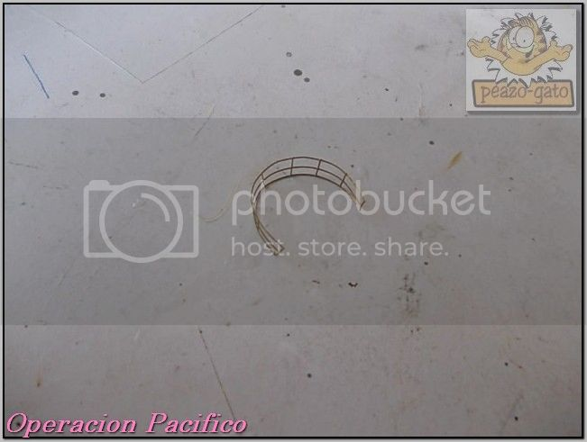 Operación Pacifico 86OperacionPacificopeazo-gato_zpsafaa3903